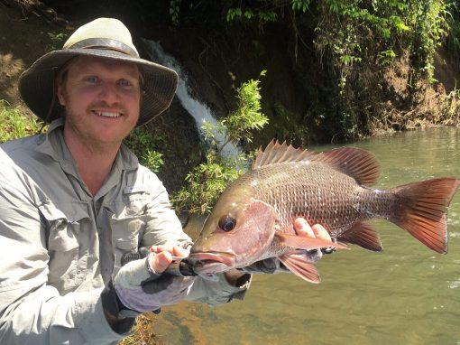 Fish Hunter FNQ