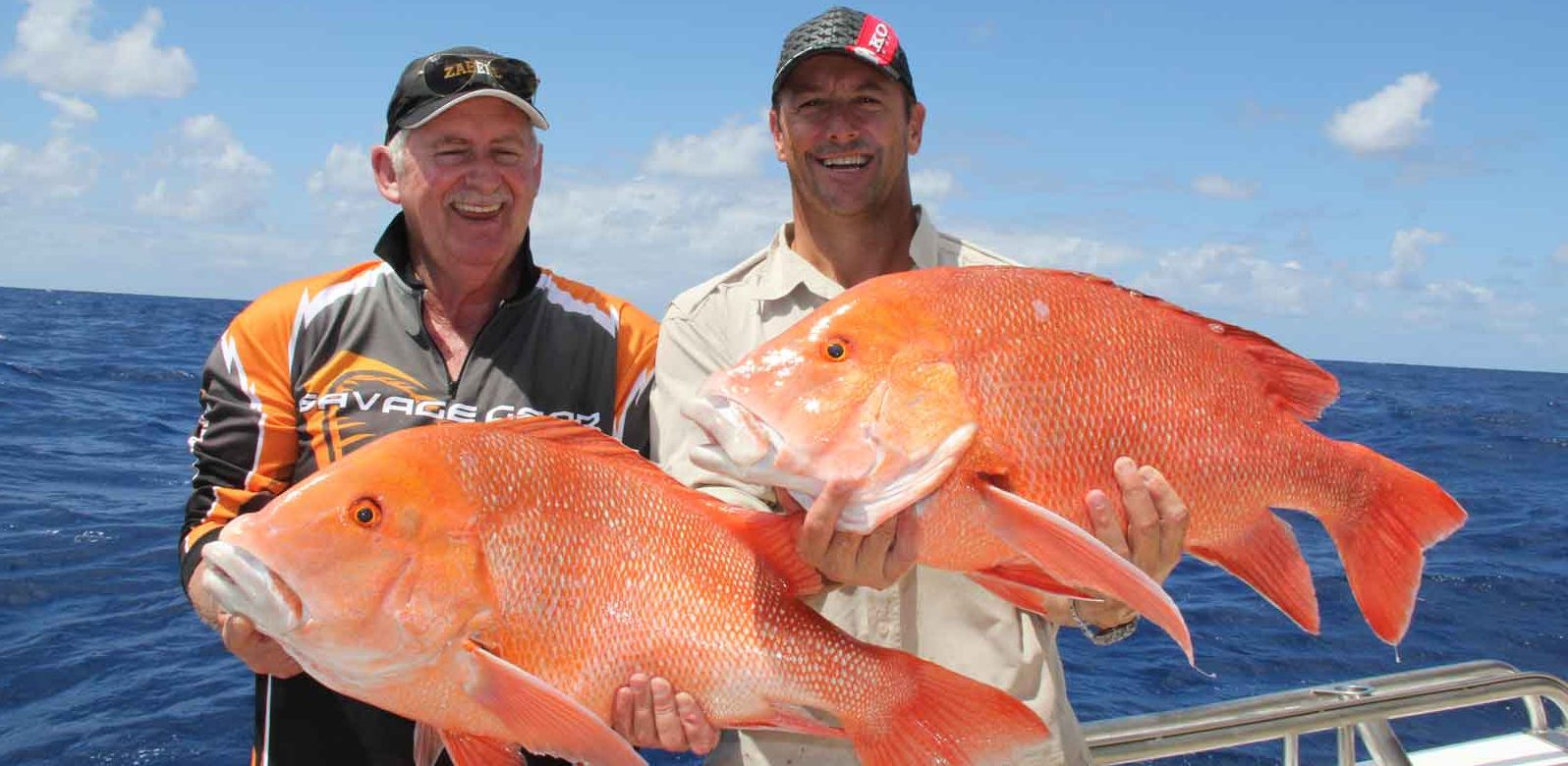 Saltwater And Freshwater Baits For Cairns And North