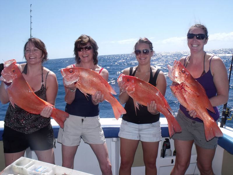 Fishing cairns rigs lures and baits for cairns and for Right hook fishing charters